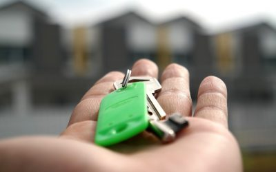 ABSI tiende la mano al ayuntamiento de Palma para mejorar la situación del alquiler